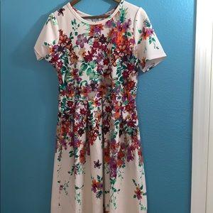 Lularoe LLR Amelia Floral Dress XL